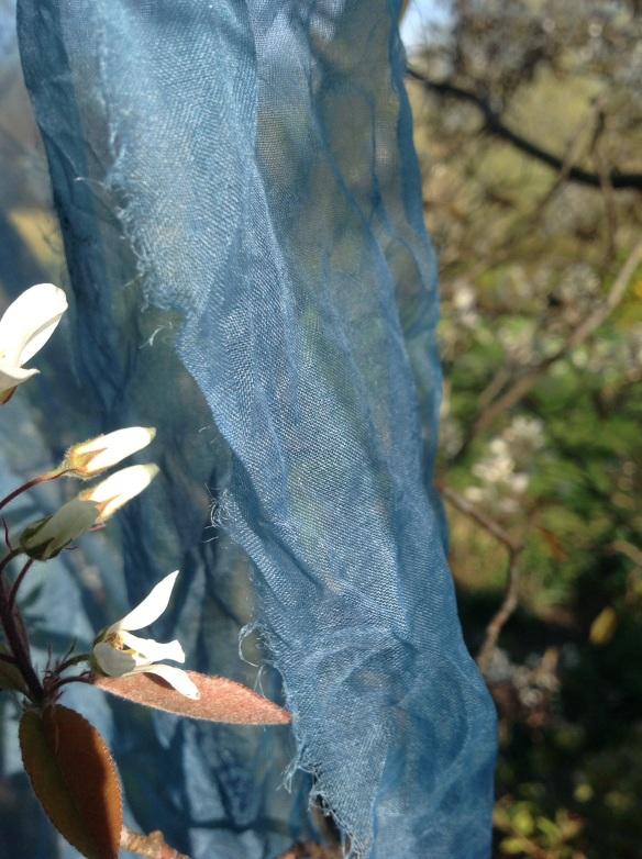 susi bancroft woad 4