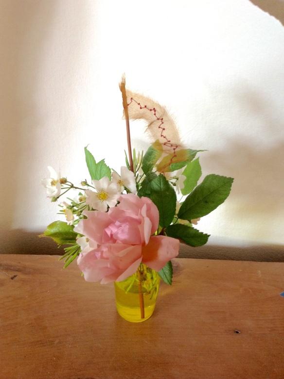 susi bancroft roses
