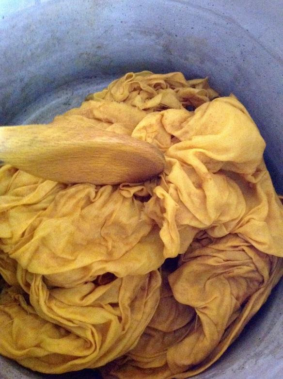 Susi Bancroft natural dye 2